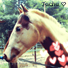 Photo de Tachu