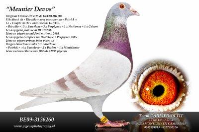 DEVOS ----------------> LE RENARD