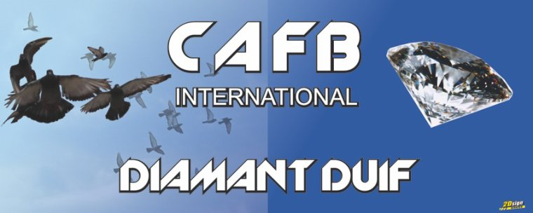 VENTE CAFB DIAMANT DUIF 2013