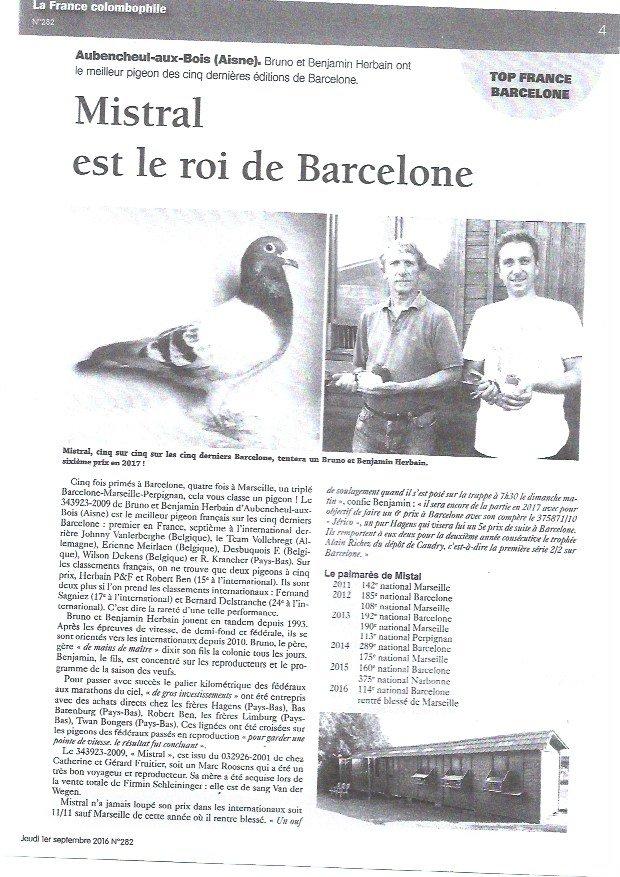 UNE SOEUR DE MISTRAL A SECLIN ! MEILLEUR PIGEON FRANÇAIS SUR BARCELONE DES 5 DERNIERES ANNEES.