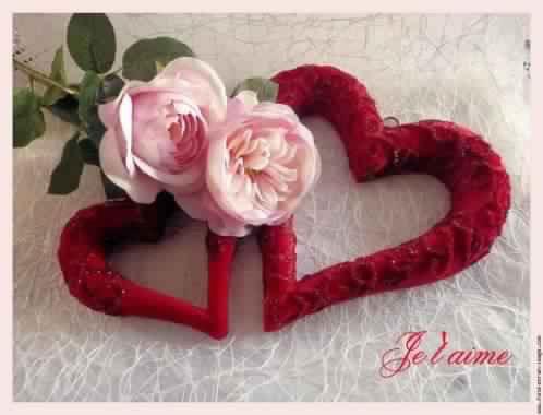 Je t'aime .....................❤️