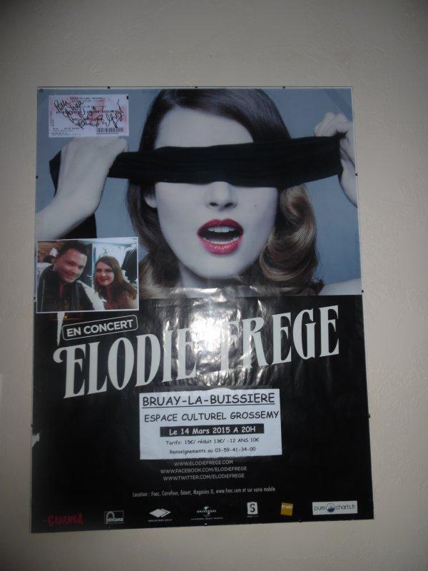 CONCERT ELODIE FREGE A BRUAY LA BUISSIERE ( DANS LE 62 ) , LE 14 MARS 2015 ( 7 )