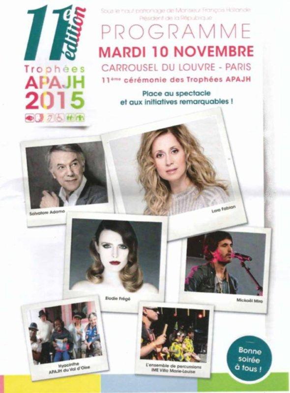 11e édition des trophées de l'APAJH, organisée par la Fédération des APAJH (Association pour Adultes et Jeunes Handicapes), au Carrousel du Louvre à Paris le 10 Novembre 2015