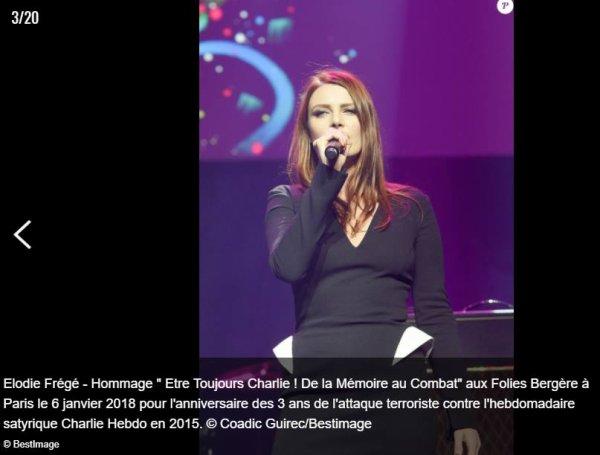 """Concert hommage """" être toujours Charlie """"aux folies bergères a Paris le 6 janvier 2018"""