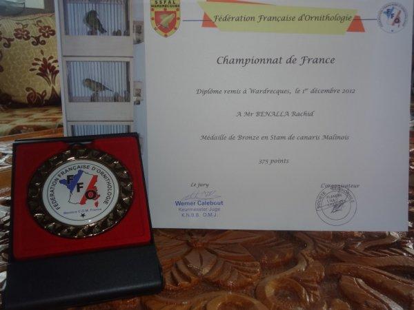 Médaille de Bronze STAM championat de France FFO