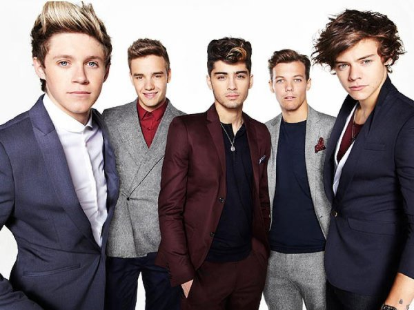 [Fic No. 11] The directioner fiction
