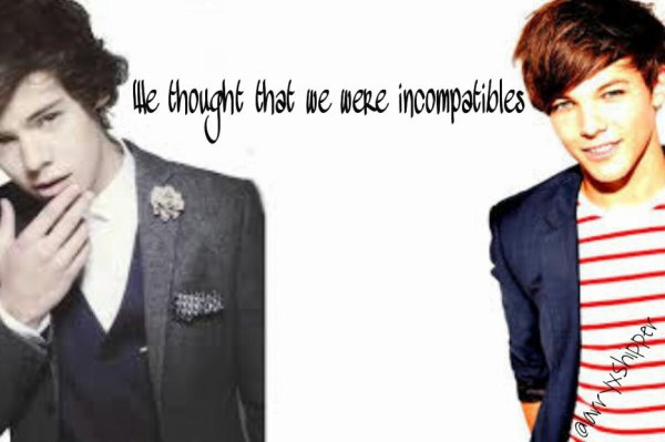 [Fic No. 12] We Thought That We Were Incompatibles.