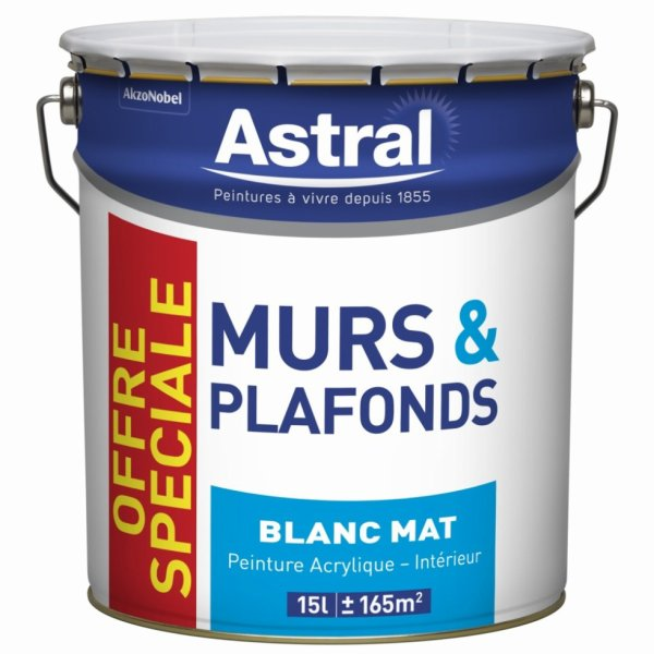 MURS ET PLAFONDS BLANC MAT 15L