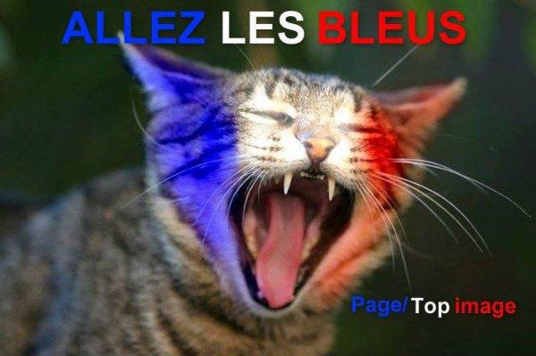 ALLEZ LA FRANCE EN FINALE