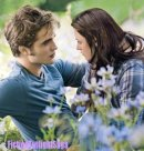 Photo de FictionTwilightSaga