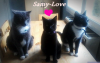 Samy-et-ses-amies