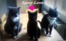 Photo de Samy-et-ses-amies