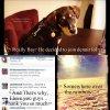 Selena a posté 3 nouvelles photos sur son compte Twitter.