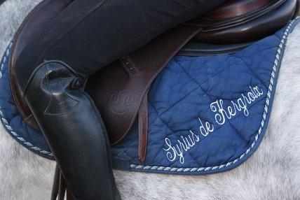 Quand l'homme eut inventé la selle, il s'aperçut que le plus gros restait à faire : rattraper le cheval [ François Cavanna ]