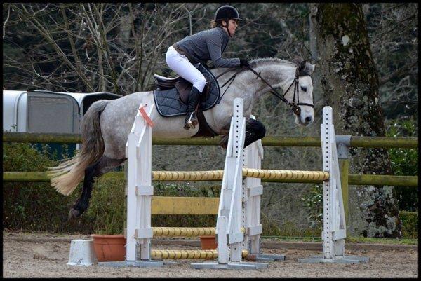 """""""Regarde un cavalier sans son cheval, il lui manque la moitié de son sang."""" Bartabas"""