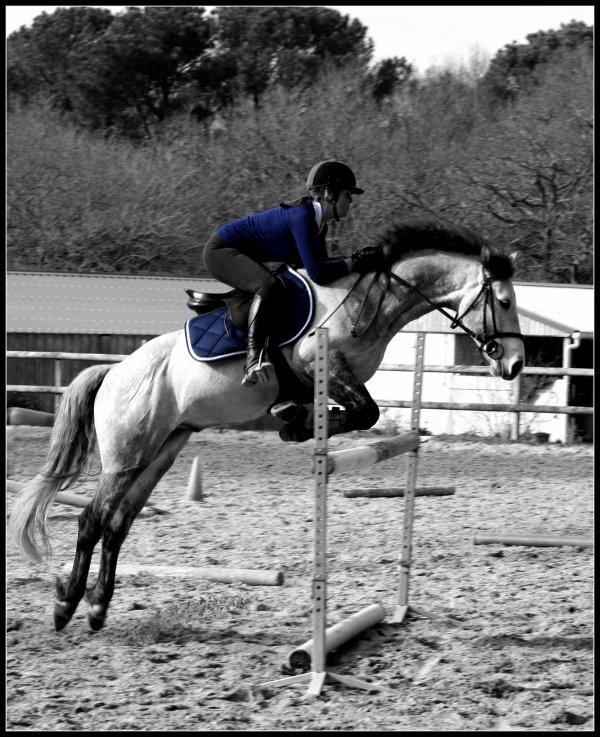 « Vivre n'est jamais que reculer pour mieux sauter. » de Jacques Sternberg