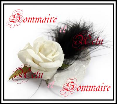 Sommaire & Actu