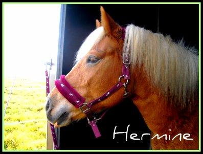 Xx Hermine xX