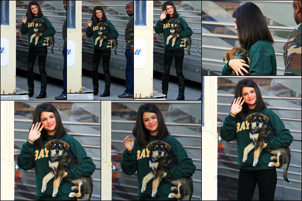 24.10.11 ─ Selena Gomez a été photographiée alors qu'elle était entrain de se promenait, étant dans Toronto, CA.La belle brunette était en compagnie de son nouveau petit chien, Baylor. Qu'il est mignon dis donc ! Concernant sa tenue, c'est un beau top pour moi !