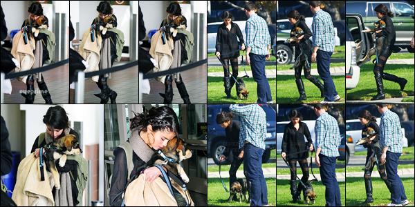 31.10.11 ─ Selena Gomez a été photographiée, alors, qu'elle arrivait à l'aéroport de LAX, étant, dans Los Angeles.Un peu après son arrivée à Los Angeles, la belle S. a été photographiée promenant son chien dans LA. Concernant sa tenue, c'est un top de ma part !