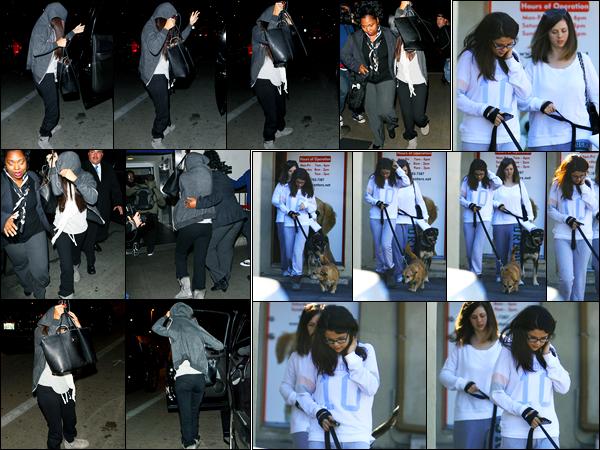 25.11.2012 ─ Selena Gomez a été photographiée alors qu'elle arrivait à l'aéroport de LAX étant dans Los Angeles.La veille, la belle Selena a été photographiée alors qu'elle quittait une clinique vétérinaire à Encino. Concernant ces tenues, ce sont deux bofs pour moi !