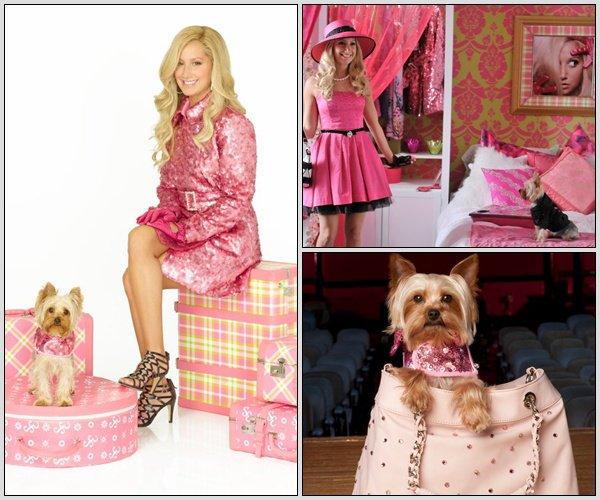 Découvrez deux photos d'un nouveau shoot pour le Zoey Magazine prises par Derek Wood dont Ashley fera la couverture en Avril 2011.