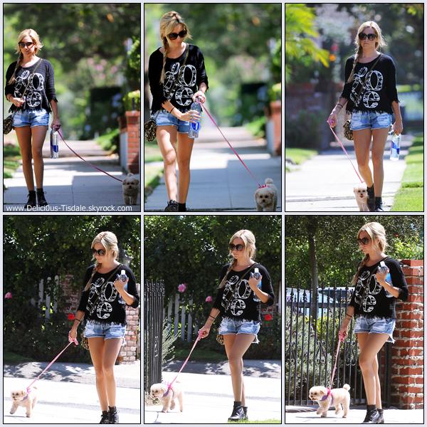 Ashley se promenant avec sa chienne Maui dans les rues de Toluca Lake ce Mardi 27 Septembre.