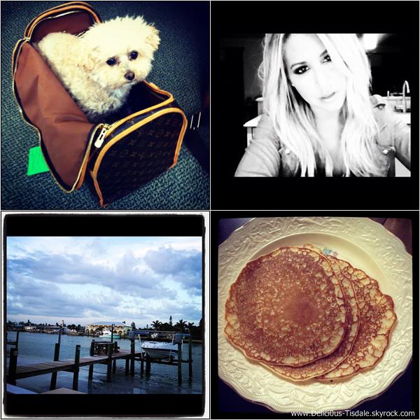 -   Instagram : Découvrez les dernières photos postées par Ashley sur son compte Instagram.   -