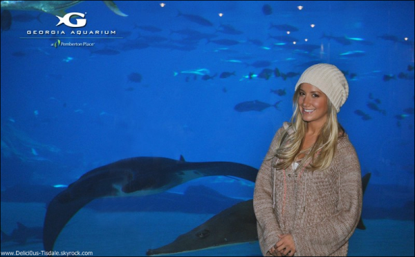 -   20/10/2012 : Ashley visitant le Georgia Aquarium à Atlanta.   -
