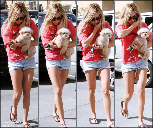 -   15/02/2013: Ashley faisant du shopping chez Planet Blue avec sa chienne Maui à Beverly Hills.   -