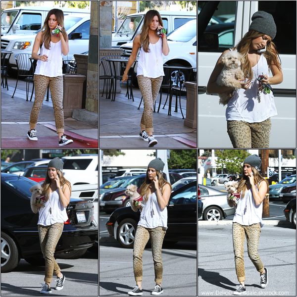 -   16/04/2013: Ashley et sa chienne Maui allant chercher à manger chez In-N-Out à Hollywood.   -