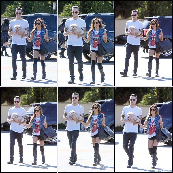 -   18/04/2013: Ashley, son petit-ami Christopher French et sa chienne Maui faisant du shopping à Los Angeles.   -