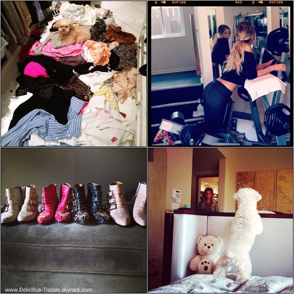 -   Instagram : Découvrez les dernières photos postée par Ashley sur Instagram.   -