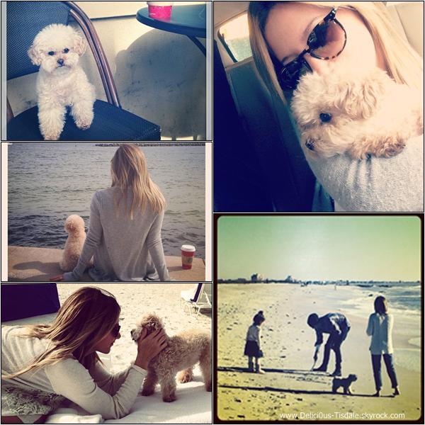 -   Instagram : Découvrez les dernières photos postées sur Instagram.   -