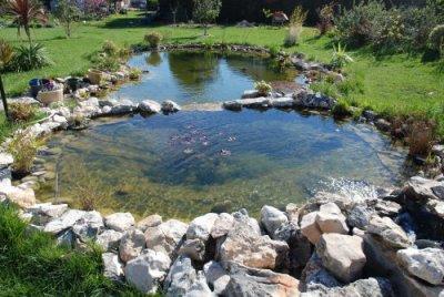 le bassin au début du printemps 2011