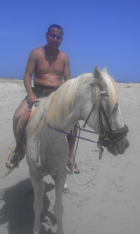sur le cheval a ras ermal djerba