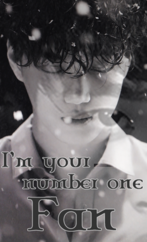 I'm Your Number One Fan : Chapitre 1