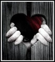 Ludo ta pris mon coeur (l)
