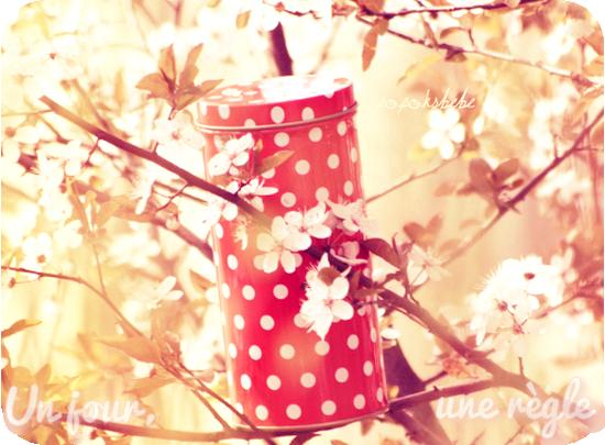 • Newsletter~ ♪