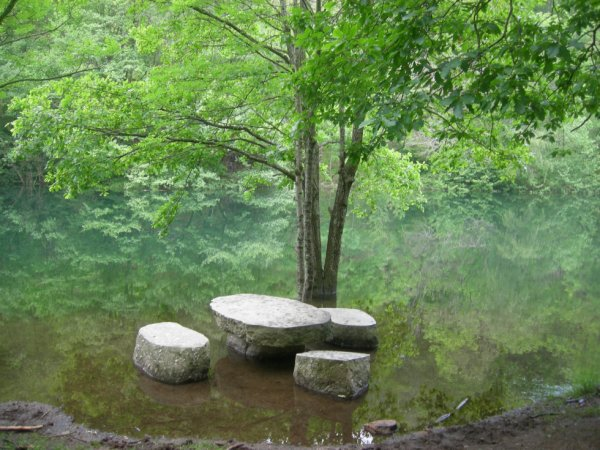 un endroit de paix!  près d'un lac..