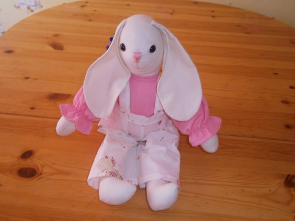 Lapin cheval anatole rose et chemise rose