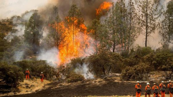 Californie. Une vingtaine d'incendies demeurent incontrôlables !