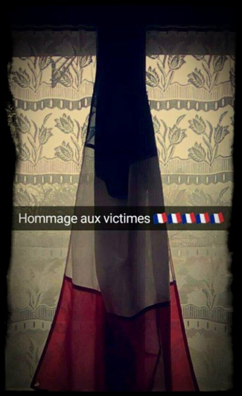 Hommage National ( 27 Novembre 2015 )