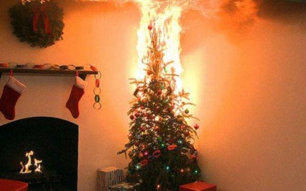 IMPORTANT : prévention avec les Sapins de Noel ! ( SDIS Ardennes )