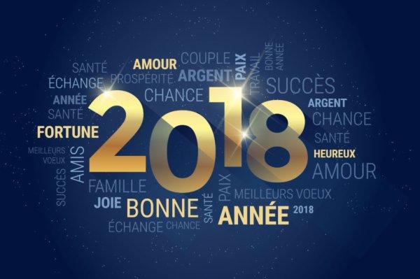 Bonne Année a tous (Avec un peut de retard)
