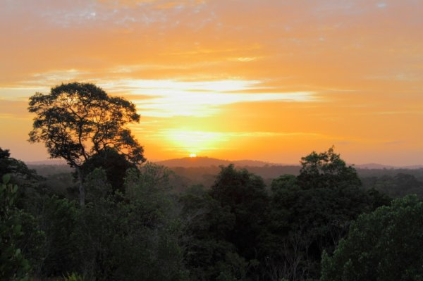 Le soleil se lève sur la Savane roche virginie.