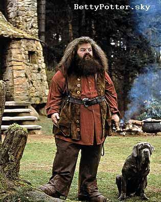 Robbie Coltrane alias Rubeus Hagrid