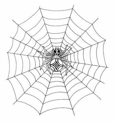 toile d 39 araign e en tatouage ma vie dans se monde de fou. Black Bedroom Furniture Sets. Home Design Ideas