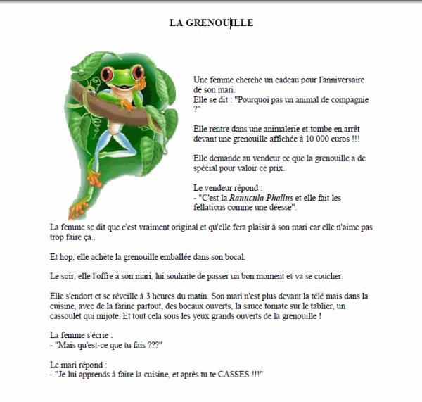 (36) 123Tablature-O-blog - skyrock.com - Humour Blag-O-Blog - La grenouille