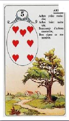 (94) Tour de carte - Sept de coeur : Cartomancie - Sept de coeur : Humour-Blag-O-Blog - Stop Déforestation